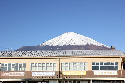 shuku-IMG_3660.jpg