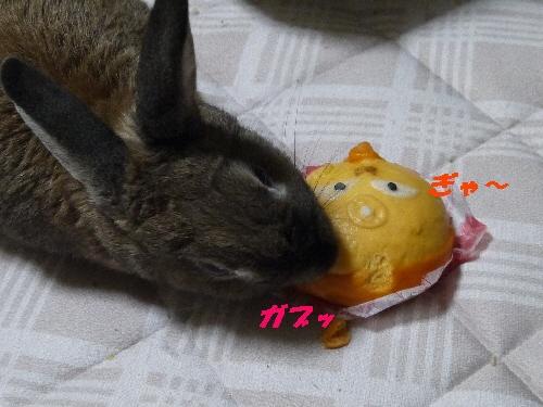 2014春キン肉まん1
