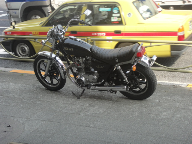 DSC03518.jpg