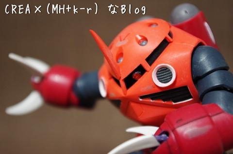 1IMGP4539.jpg