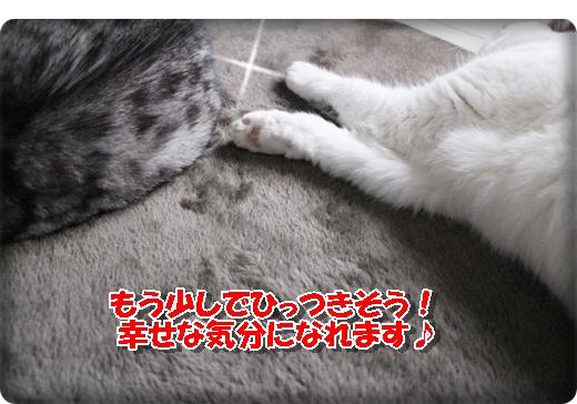 IMG_5763.jpg