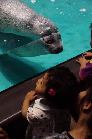 水族館 (1)