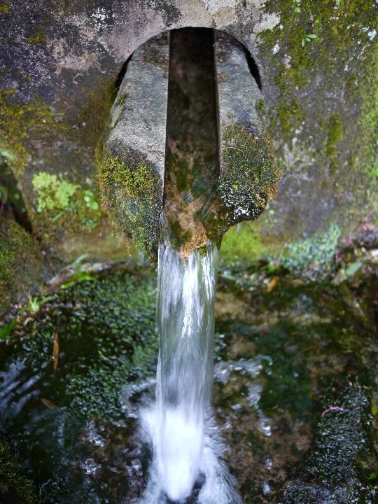 本宮の泉1