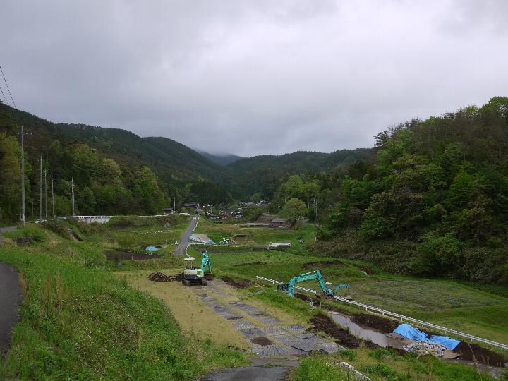 淀江の水田