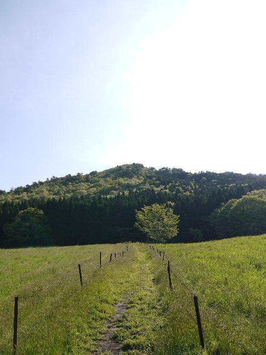 上蒜山登山道入口