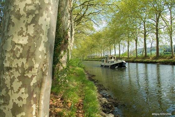 Canal_01.jpg