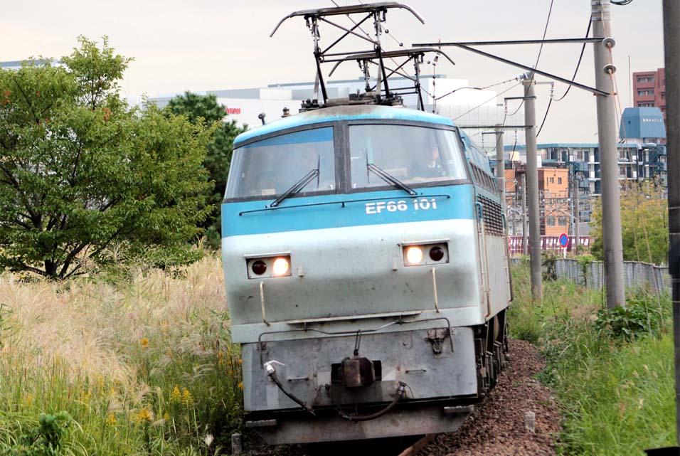 12-10-12-EF66101.jpg