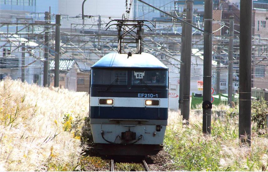 12-10-19-EF210-1.jpg