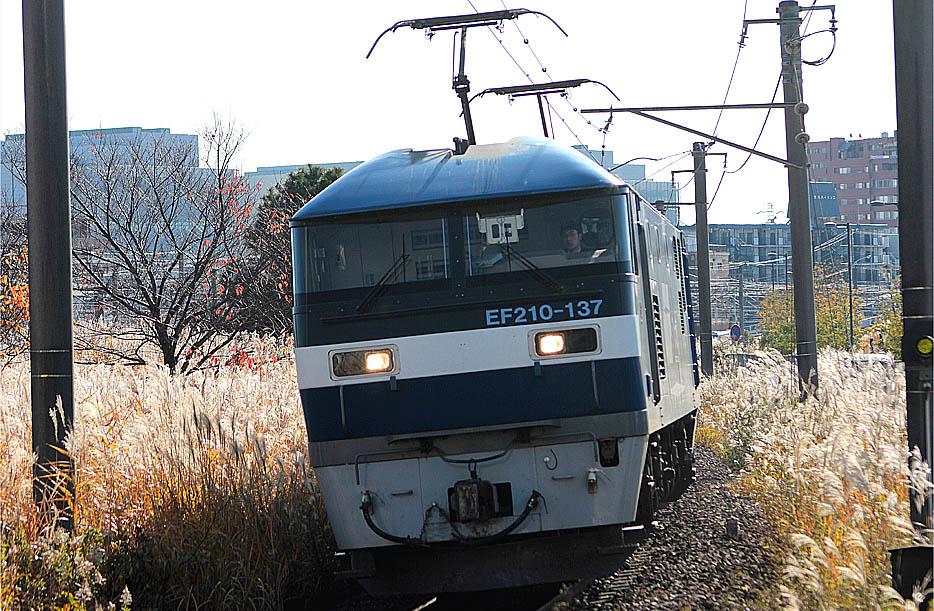 12-12-08-EF210-137.jpg