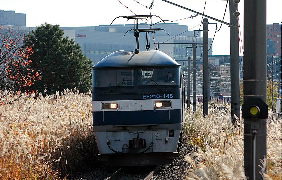 12-12-08-EF210-148.jpg