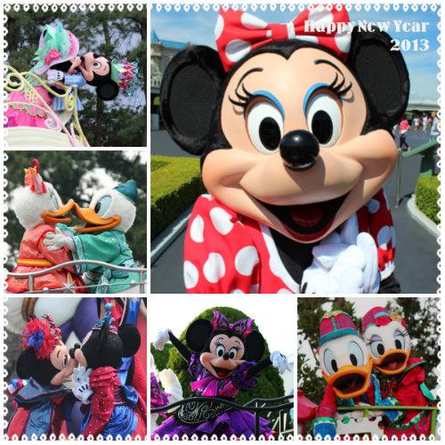 collage_20121231140751.jpg