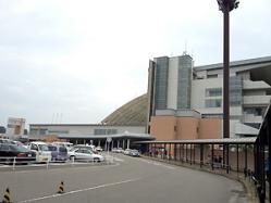 新潟競馬場。