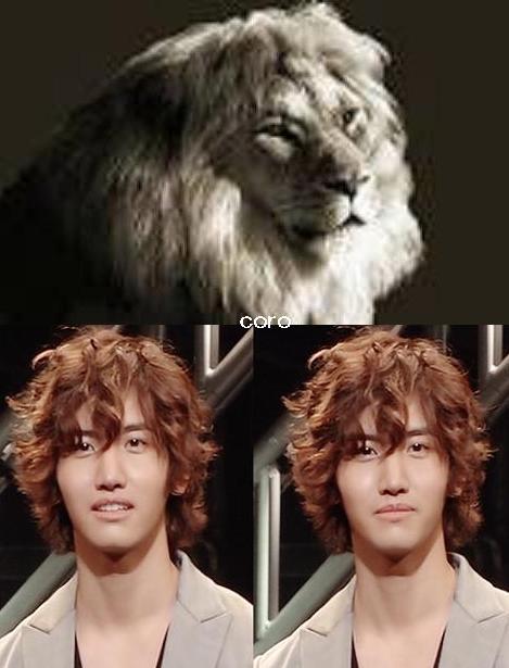 ライオンちゃみ