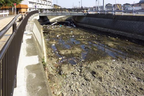 市内を流れる広瀬川