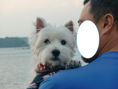 旅犬クララと松島
