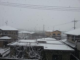 13117雪景色2