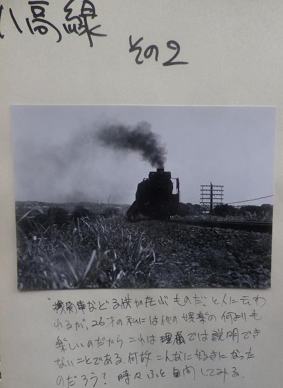 IMGP3242.jpg