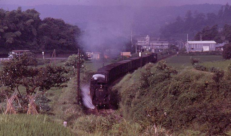 cyusai-nakatsugawa2.jpg
