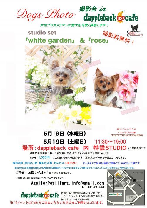 20125月whitegarden改+_convert_20120504202901