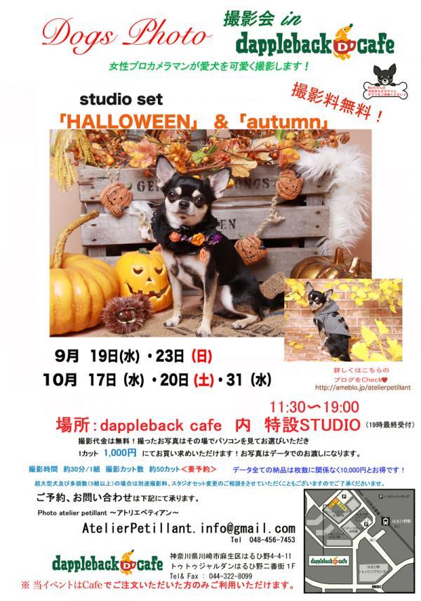 20129月小+_convert_20120916193444