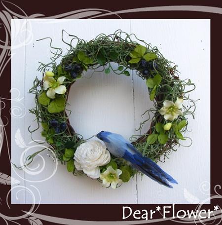 bird01b.jpg