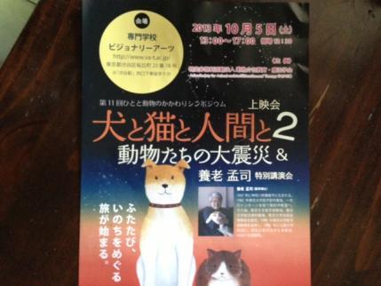 20130925犬と猫と
