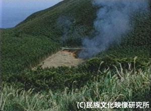 F118竹焼畑300