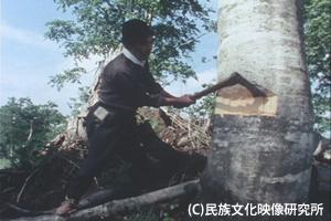 F005木地師002木を伐る