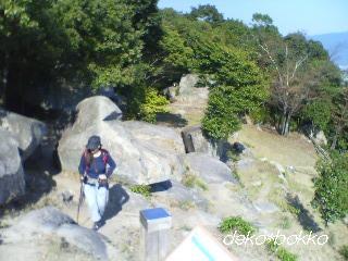 武田山 銀山城跡から見る