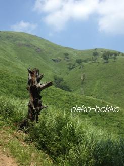 深入山 201308-3