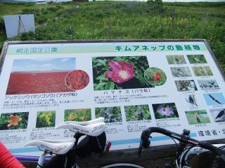 Hokkaido 10