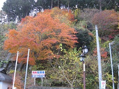 ohyamaiiriguchi 2