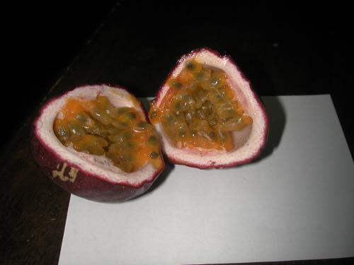 passyonfruits mi