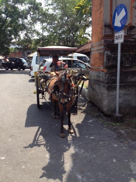 BALI_馬車