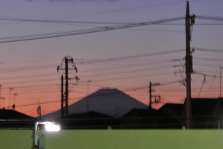 DSC_3177.jpg