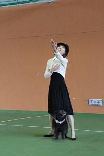141116藤田ファセリア演技