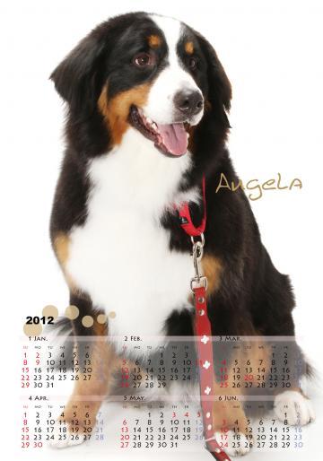 カレンダー2_convert_20121105154411