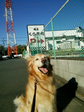 9-27raichi4d.jpg