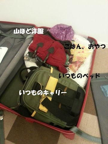 20121117_165847.jpg