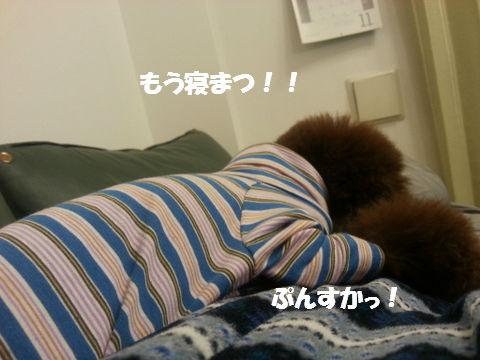 20121118_201527.jpg