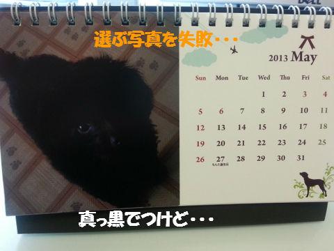 20121118_234059.jpg