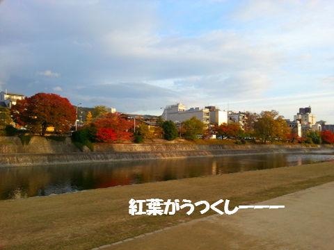 20121120_155733.jpg