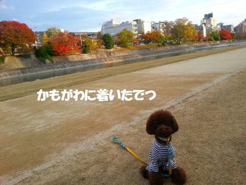 20121120_155757.jpg