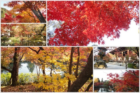 2012京都旅行wもんた1