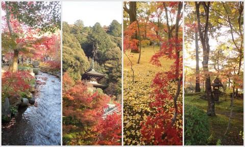 2012京都旅行wもんた