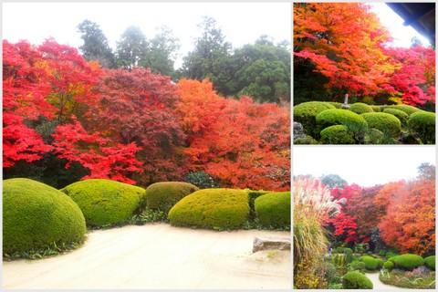 2012京都旅行wもんた5
