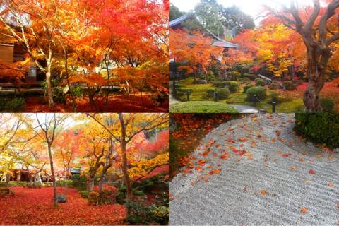 2012京都旅行wもんた4