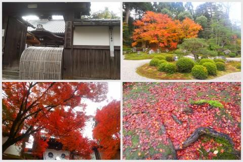 2012京都旅行wもんた3