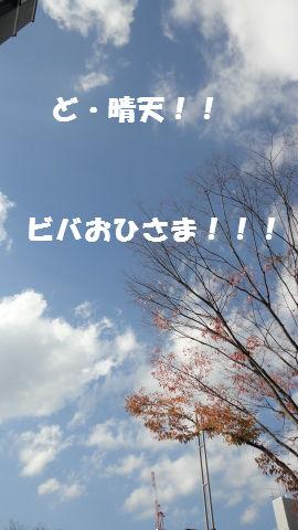DSC00514.jpg