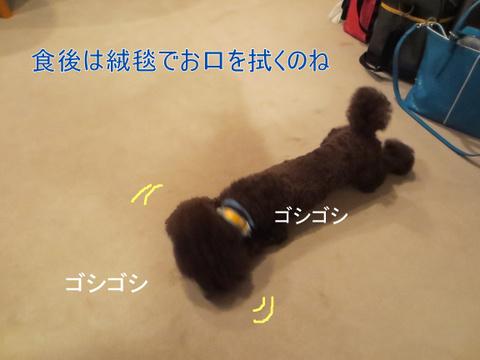IMG_0429-001.jpg